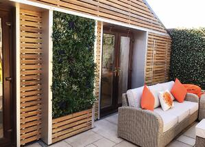 green-wall-shed